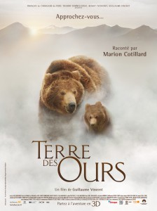 Animaux TERRE DES OURS - affiche