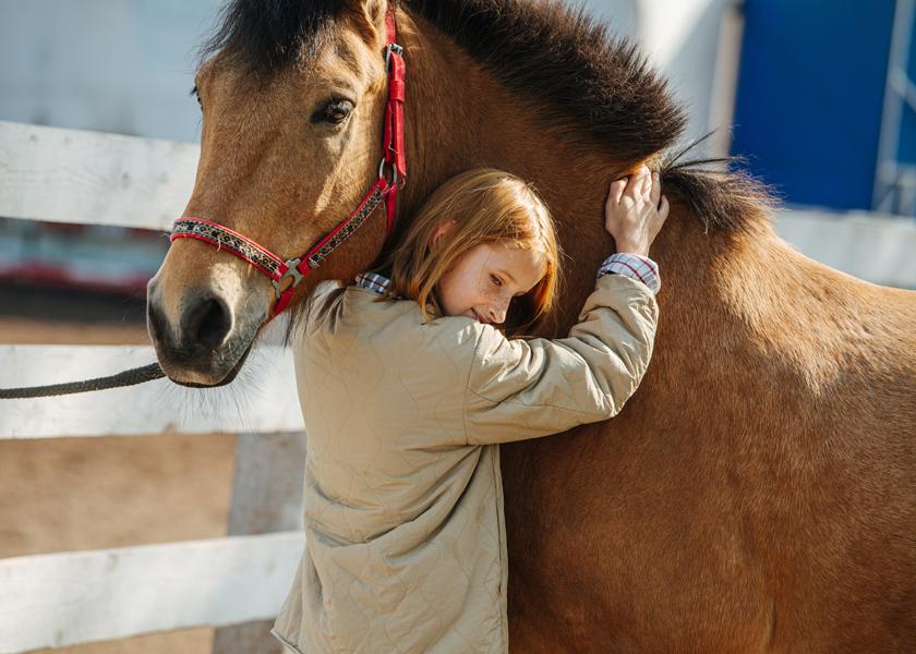 chaines youtube sur l'équitation