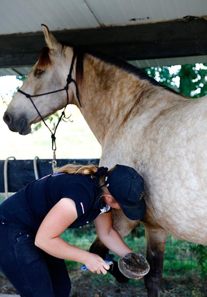 """Avant de commencer le cours d'équitation, Aude nettoie les """"pieds"""" de Sublime. Elle enlève la terre et les petits cailloux que le cheval peut avoir sous les sabots. Chez Aude, les sabots des chevaux ne sont pas ferrés : c'est l'une des règles de l'éthologie*. (© Vincent Gire/Milan presse)"""