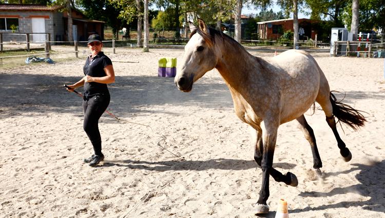 Le cours commence à pieds. Si Aude sent que le cheval n'a pas envie d'être monté, elle le respecte et ne monte pas. Les bases d'éthologie sont le respect et le bien-être de l'animal. C'est ce que Aude enseigne à ses élèves. (© Vincent Gire/Milan presse)